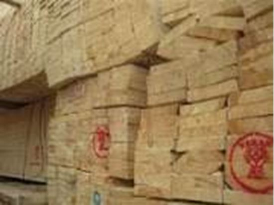 تصویر از تخته قالببندی و چهارتراش جهت پروژۀ سدسازی_تهران