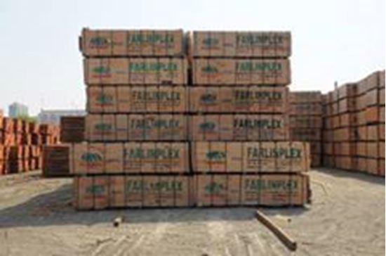 تصویر از پلی وود چینی فارلین پلکس_خاش،سیستان و بلوچستان