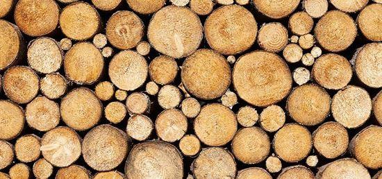 تصویر از چوب گرد-شمع چوبی_قم