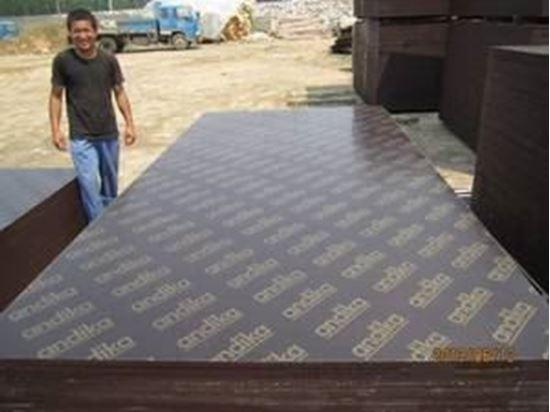 تصویر از خریدار  تخته  چند  لایی  9  میلی  متری  1500 برگ  _  تهران